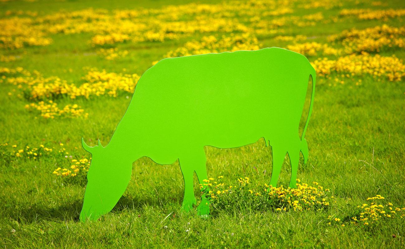 Kuh grasend - Kein Muuh, kein Mäah. Nur Spaß und Freude sollen die Kühe und Kälbchen aus 4mm pulverbeschichtetem Stahl im Garten verbreiten. Pflegeleicht stehen oder grasen sie ganzjährig im Garten und trotzen mit Witz und Charme farbenfroh Wind und Wetter. Vorgebohrte Löcher in der Bodenplatte ermöglichen bei Bedarf eine feste Verbindung zum Untergrund.